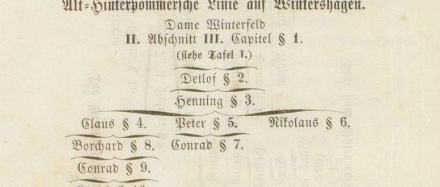 Hinterpommersche Linie Winterfeld